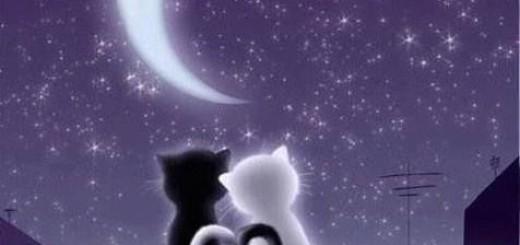 Najljepše ljubavne sms poruke za laku noć