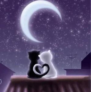 Najljepše ljubavne sms poruke za laku noć - Cestitke za